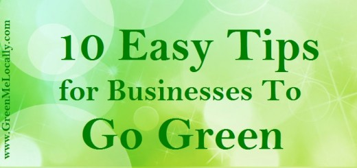 10 Easy Tips for Businesses To Go Green